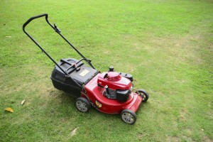 It is perfectly safe to used ethanol-blended fuel (E10) in your lawn mower and other equipment powered by a small engine.