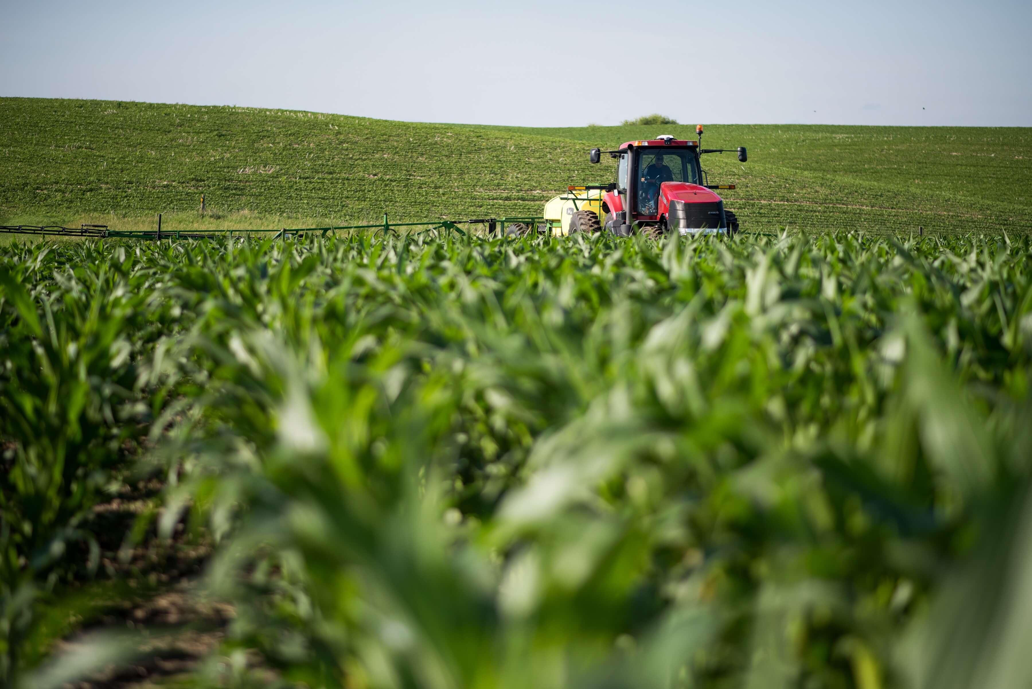 Nitrogen fertilizer application